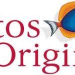 Η Atos Origin συνεργάτης Oracle