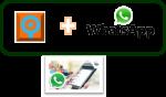 q whatsapp