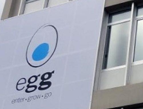 Egg Investor Day