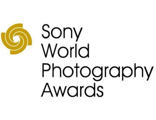 Ανακοινώθηκαν οι μεγάλοι νικητές των Sony World Photography Awards 2020