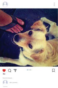 6 tips και 14 apps για τέλειο Instagram!